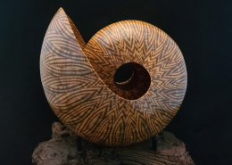 """Spalted pine; 12"""" long, 12"""" high, 8.5"""" wide (without stand). Available"""
